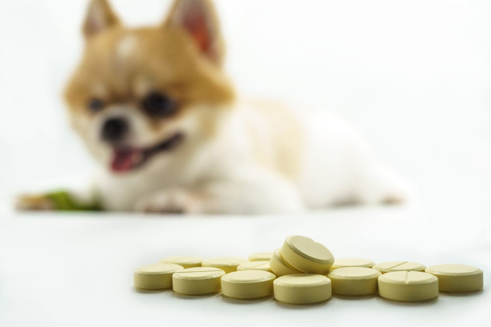 pet supplement manufacturing