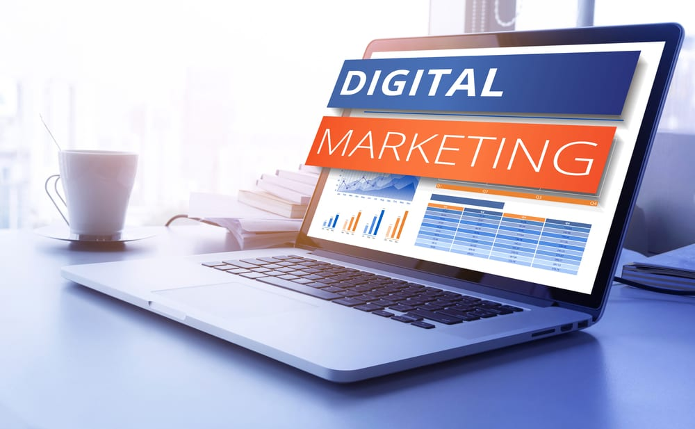 Palmetto Digital Marketing
