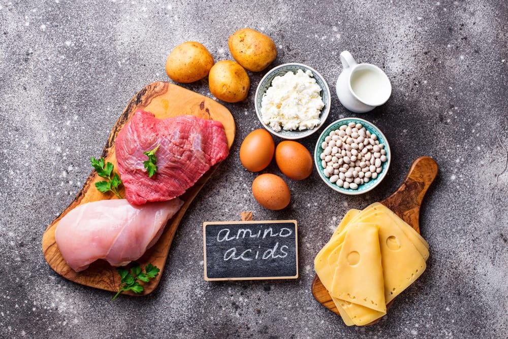 amino acids vs protein: amino acids